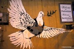 A- Peace bird